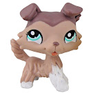 Littlest Pet Shop 3-pack Scenery Collie (#1330) Pet