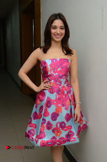Actress Tamanna Latest Images in Floral Short Dress at Okkadochadu Movie Promotions  0047.JPG