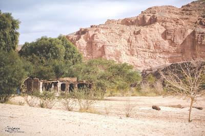 نهاية الأخاديد البيضاء، نوبيع، سيناء. ديسمبر 2014.
