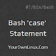 Bash Scripting - 'case' Statement