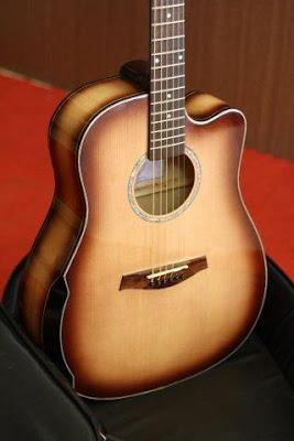 Bán Đàn Acoustic Guitar MP101 – N