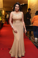 Actress Himaja Stills in Golden Spicy Long Dress at SIIMA Short Film Awards 2017 .COM 0299.JPG