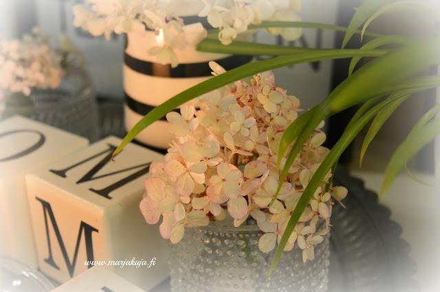hortensian kukka sisustuksessa