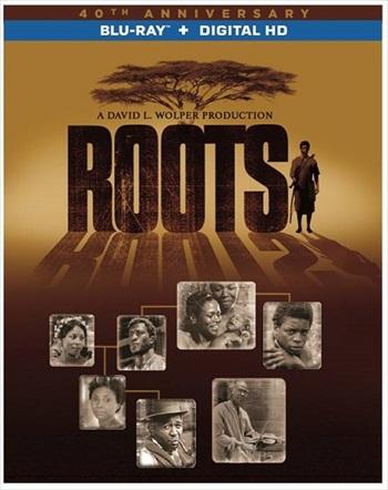 Roots Part 2 (2016) Dual Audio Hindi 480p BluRay 300mb