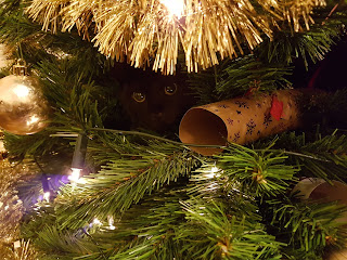 Gratuitous Picture of Cat in Christmas Tree