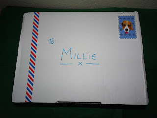 box with name millie