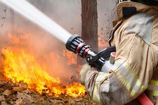 Cómo actuar ante un incendio en el monte - Fénix Directo blog