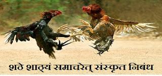 shathe shathyam samacharet in sanskrit