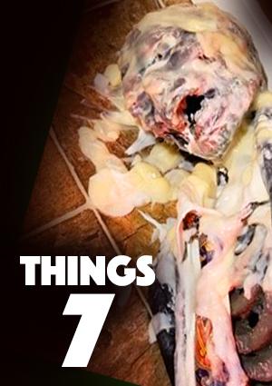 things 7