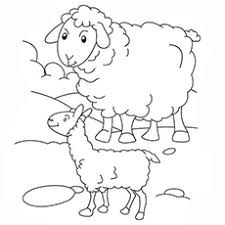 The Latest Of Mamma And Baby Sheep Coloring Pages
