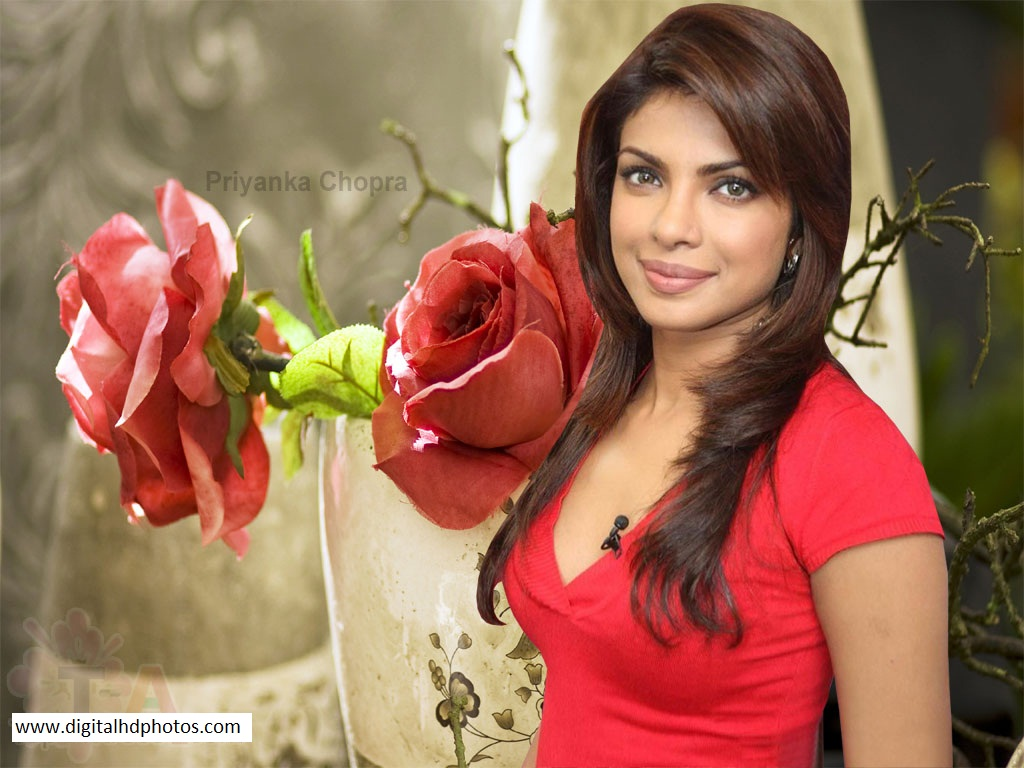 Akash Name Wallpaper In Hd Priyanka Chopra Digital Hd Photos