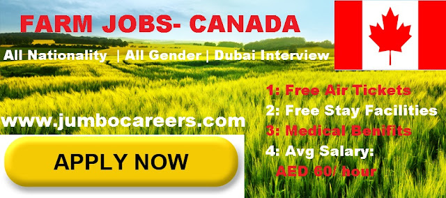 Canada jobs salary 2018. Latest canada jobs from Dubai