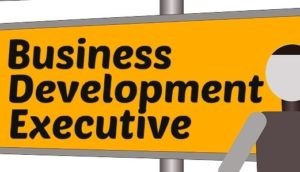 business development executive interview questions answers
