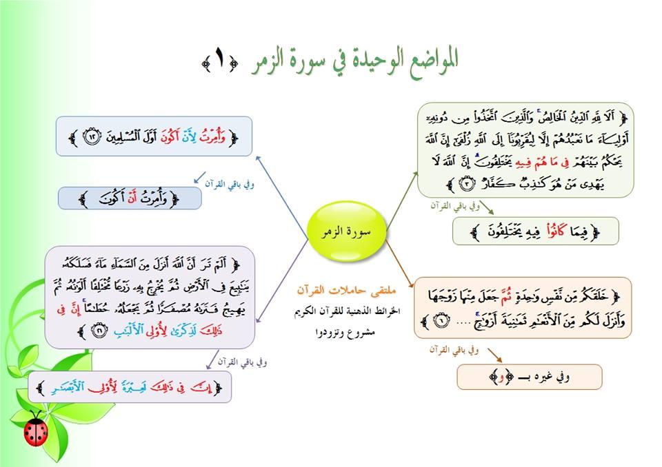 كتاب متشابهات القران الكريم pdf