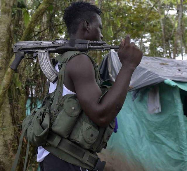 Guerrilheiro das FARC num acampamento em Antioquia (Colômbia) PCC quer recrutá-los pela sua experiência em armas pesadas.