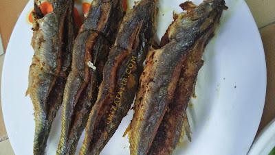 Ikan Cencaru Sumbat , resepi ikan cencaru sumbat, resepi kelapa sumbat dalam ikan, resepi inti cucur badak, resepi inti pulut panggang, resepi ikan bakar, ikan cencaru, ikan jaket, resepi ikan goreng