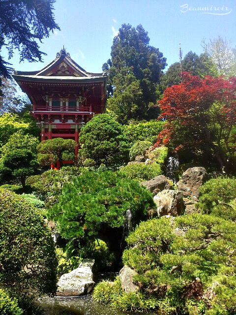 Japanese Tea Garden in Golden Gate Park, San Francisco