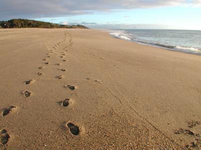 Lesung Spuren Im Sand