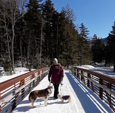 Waterville Valley ski resort in New Hampshire is dog friendly. Pet friendly hotels and resorts. Travel with dogs