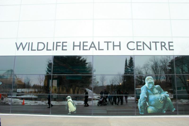 Toronto Zoo Wildlife Health Centre