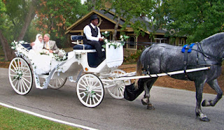Best Cinderella Wedding Carriages