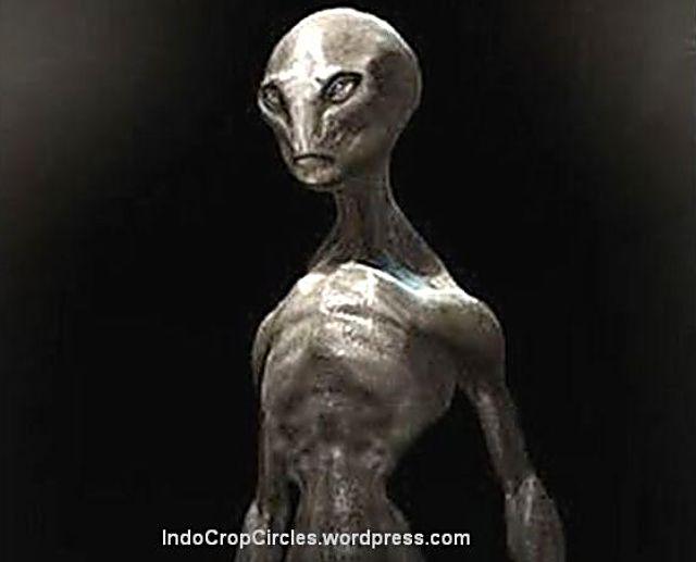 http://loverlem.blogspot.com/2017/11/ternyata-inilah-jenis-alien-yang-sampai.html