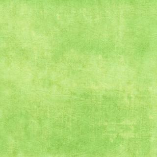 Fondos o Papeles en Tonos Verdes del Clipart Splash en Verano.