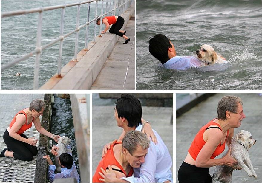 A young passerby rescuing stranger's Shih Tzu who was hurled into the rough water by strong wind.