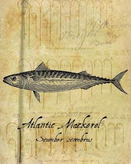 digital collage artwork fish background vintage print