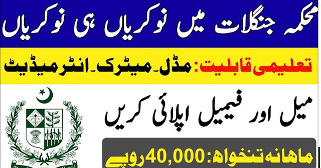 Forest Department Jobs 2020 Latest Advertisement