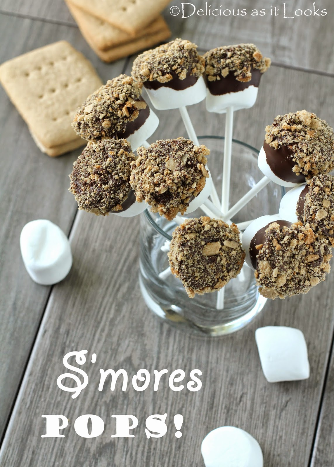 S'mores Pops (Gluten-Free, Dairy-Free, Egg-Free)  /  Delicious as it Looks