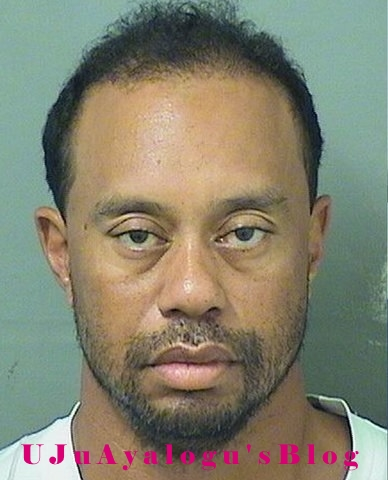 Tiger Woods pleads guilty to reckless driving in connection with his DUI arrest in May