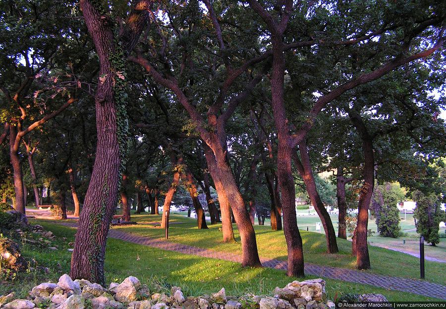 Дубрава в парке курорта Св. св. Константин и Елена, Болгария