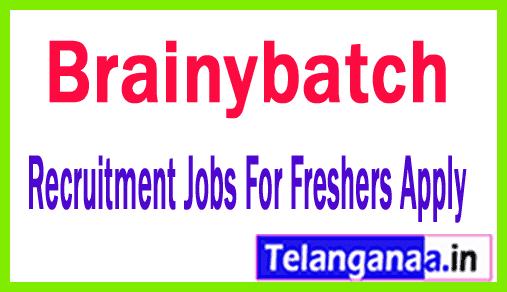 Brainybatch Recuitment Jobs For Freshers Apply