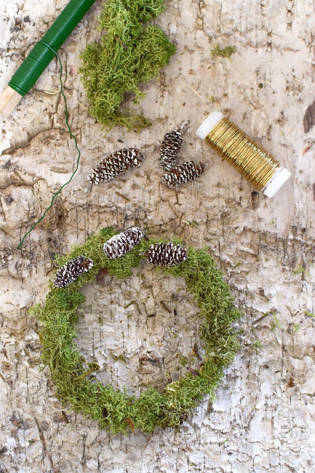 Anleitung Kranz binden aus Moos für den Herbst und Winter. DIY Dekoration basteln einfach selbermachen: Naturmaterialien basteln 1