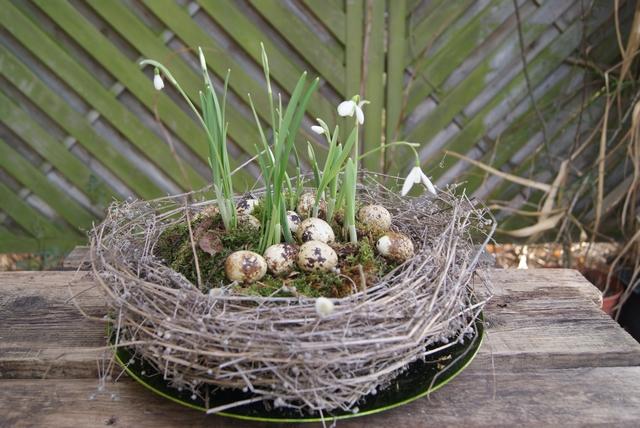 Filz und Garten - Gartenblog