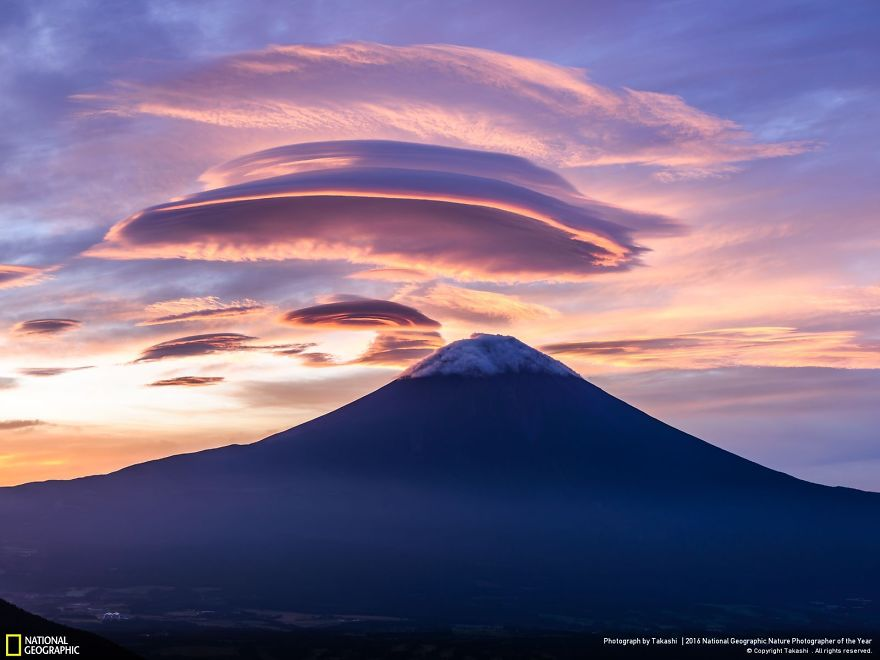 20+ Of The Best Entries From The 2016 National Geographic Nature Photographer Of The Year - Ufo Formation