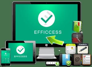 Efficient Efficcess 5.50 Build 542 Multilingual Full Serial