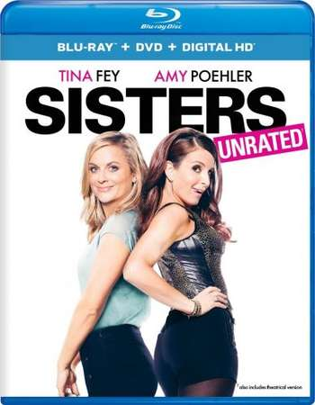 Poster Of Sisters 2015 English 350MB BRRip 720p ESubs HEVC Free Download Watch Online Worldfree4u