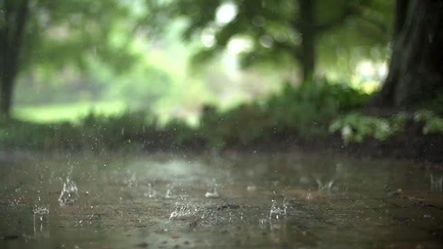 Raindrops HD Wallpaper Engine