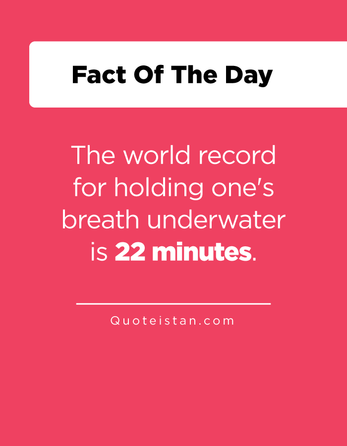The world record for holding one's breath underwater is 22 minutes.
