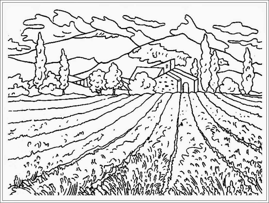 10 Mewarnai Gambar Pemandangan Gunung Sawah Sketsa Lukisan Alam