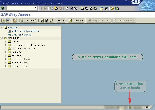 Ventana SAP - CSAP