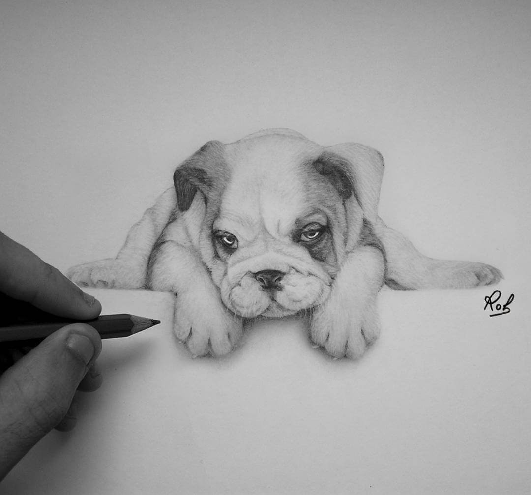 06-Bulldog-Puppy-Roberto-Matteazzi-Animal-Drawings-in-Black-and-White-Charcoal-Portraits-www-designstack-co