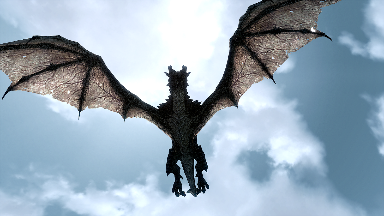 Dragons Existed And They Breathed Fire