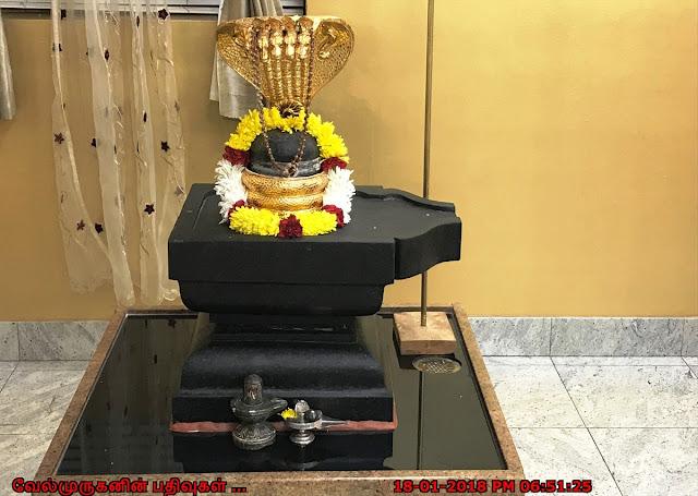 Lord Shiva in Livonia Sai Temple