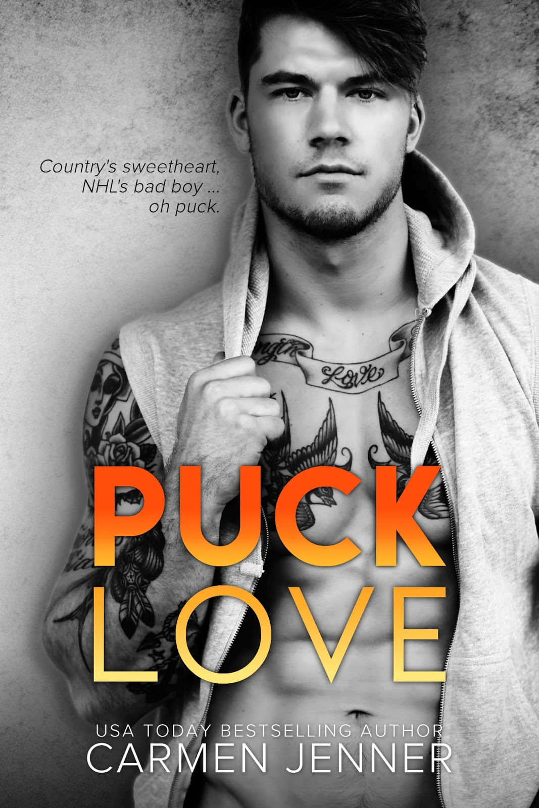 Dianes book blog puck love by carmen jenner title puck love fandeluxe Gallery