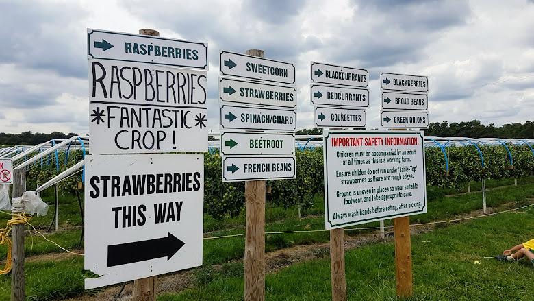 農場內的作物方向告示牌