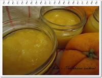 rychlá pomerančová marmeláda