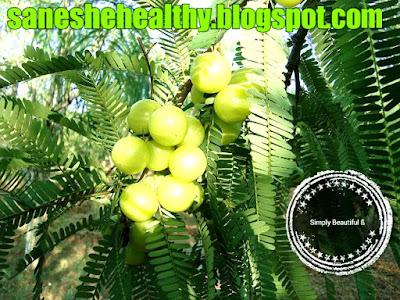 Indian gooseberry or amla contains ascorbic acid.